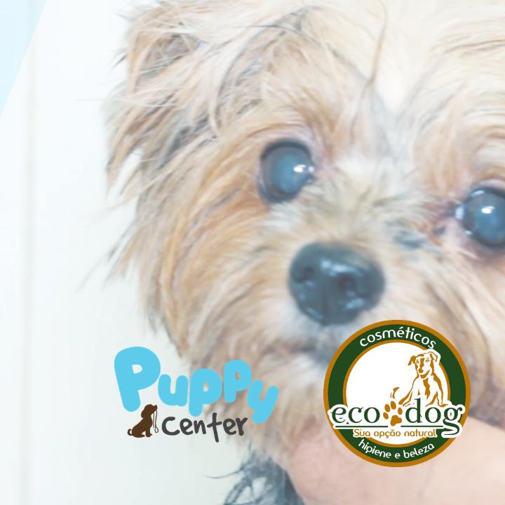 88df5f366 Seu Pet merece o melhor banho! | Puppy Center & Ecodog